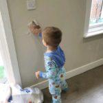 Mack helping decorate around the house
